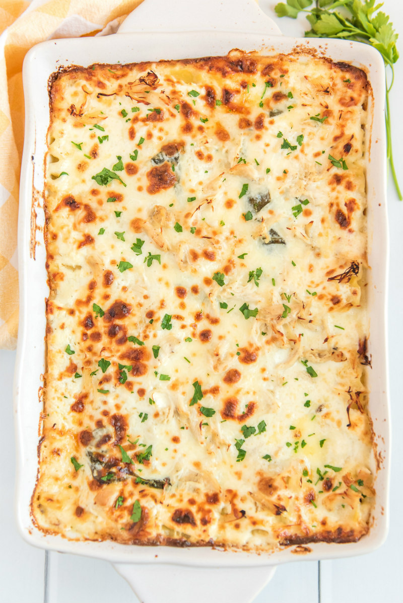 white chicken lasagna in white casserole dish just out of oven