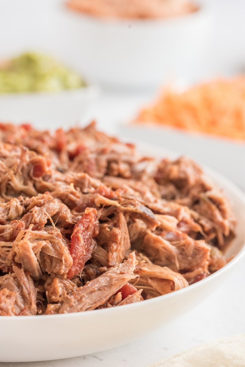 slow cooked pork in a bowl