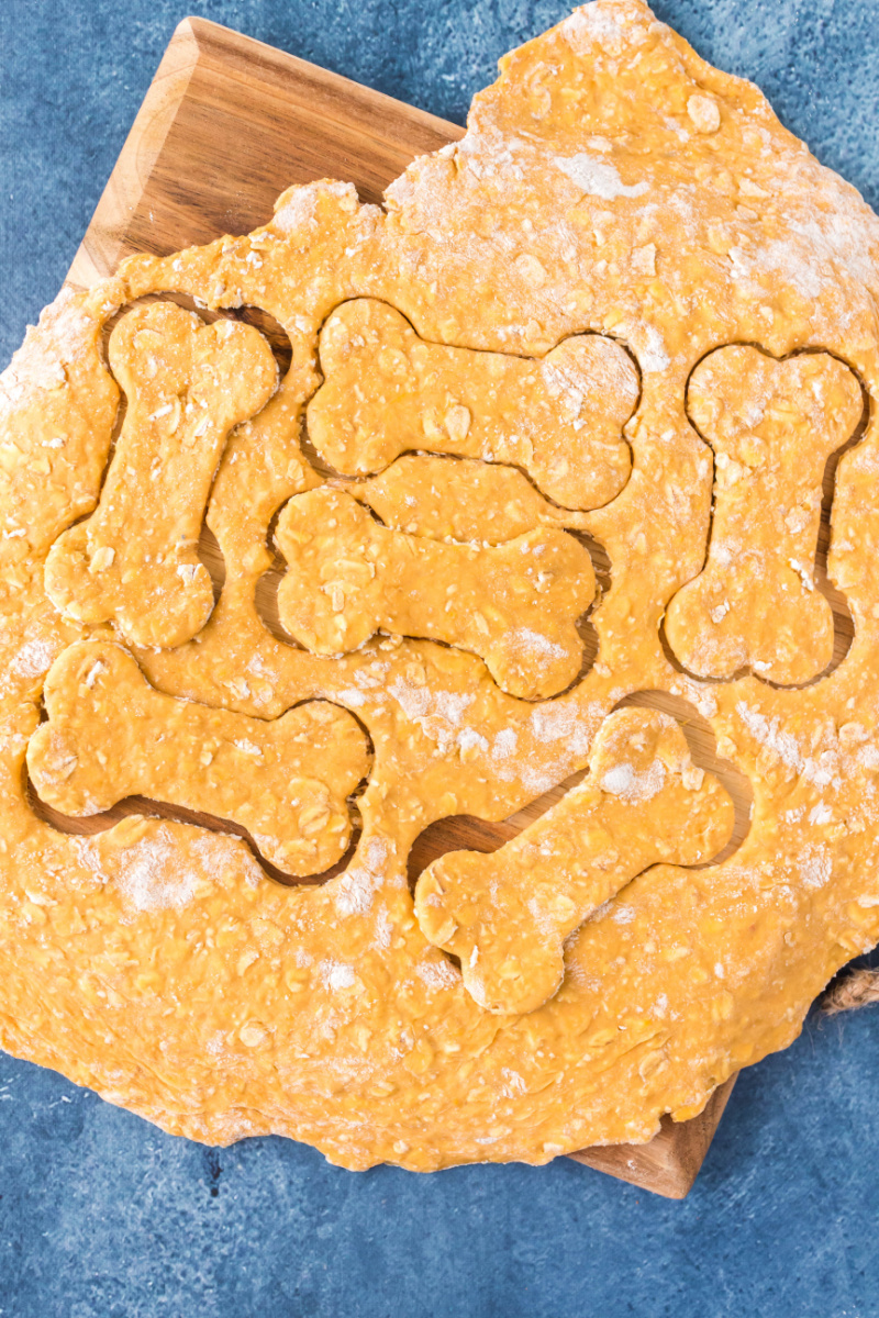 cut dog biscuits out of dough